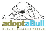 adoptaBull Rescue Network